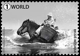 Horseback shrimp fishing . Postage stamps of Belgium.